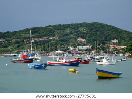 boats anchored on the bay