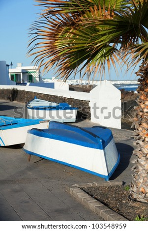 Boats and palm on the coast. Lanzarote, Canary, Spaine - stock photo