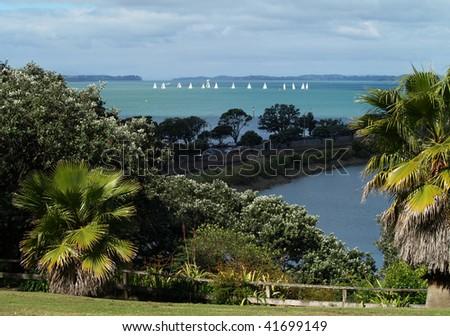 Boats in Mechanics bay, Auckland, New Zealand - stock photo