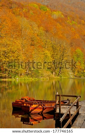 Boats on the lake with forest in background