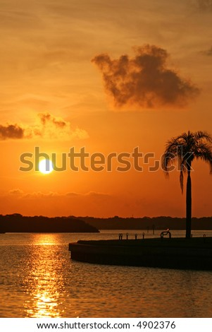 Boca Ciega Bay Sunrise with palm tree. Treasure Island Florida - stock photo