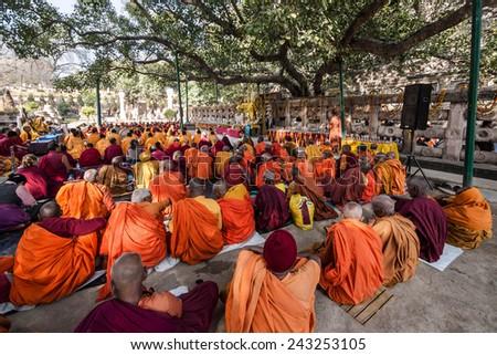 Bodhgaya, India - February 23: Buddhist monks sitting under the bodhi tree at Mahabodhi temple in Bodhgaya, Bihar, India.  - stock photo