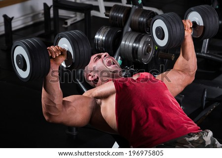 Bodybuilder Performing Chest Press With Dumbbells / Chest training - stock photo