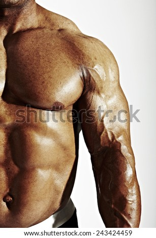 Bodybuilder Torso Arms - stock photo