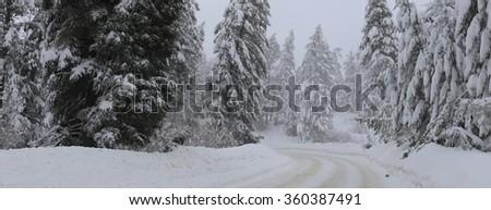 Bogus Basin Road, Boise, Idaho - stock photo