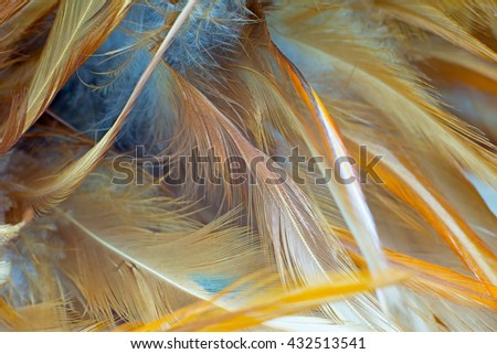 Bohemian boho style vintage color trends ,Chicken feather texture background,Interior soft luxury brown heaven angels,Modern image used for fashion design living room,office and others