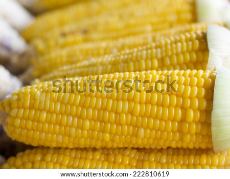 Boil Fresh corn selling in the market