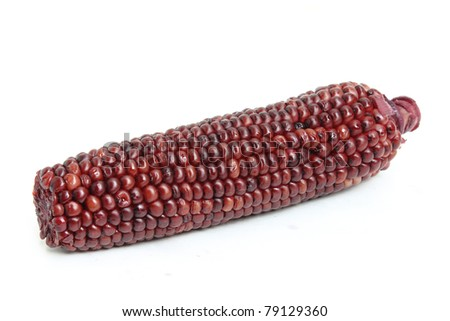Boiled corn isolated on a white background.