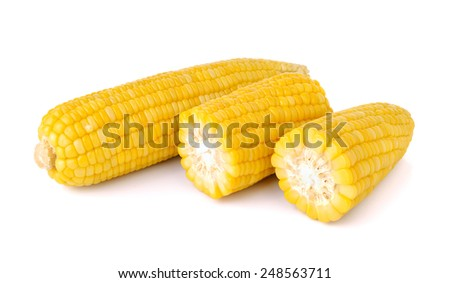Boiled corn on white background - stock photo