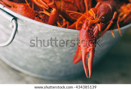 Boiled crawfish in a galvanized steel bucket with one hanging over the edge.  - stock photo
