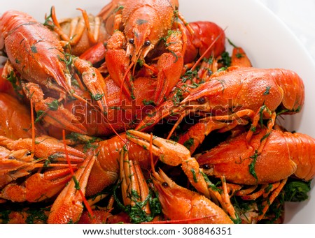 boiled crayfish in a white plate closeup - stock photo