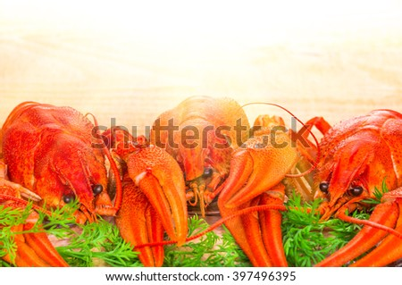 boiled crayfish with herbs on a wooden table - stock photo