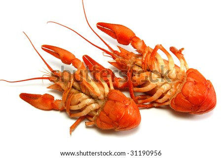 Boiled crayfishs head over heels - stock photo