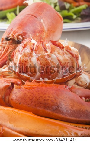 boiled lobster meat and shell with salad - stock photo