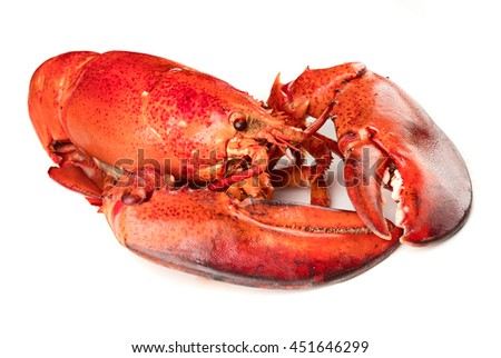 Boiled lobster on white background - stock photo