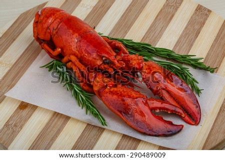 Boiled Lobster with rosemary branches on the wooden background - stock photo