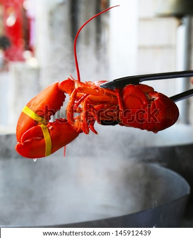 Boiled Maine lobster  - stock photo