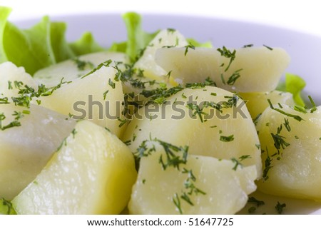 Boiled Potatoes with herbs. close up - stock photo