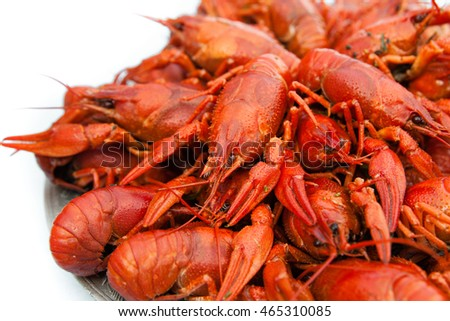 Boiled red crayfish on white background closeup.