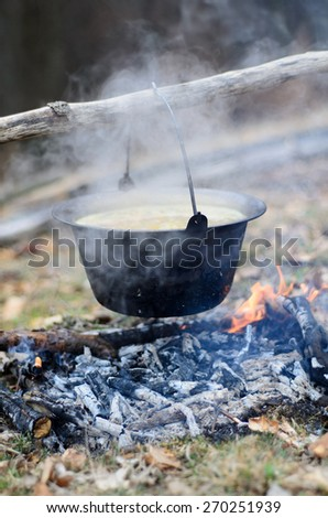Boiling cooking pot with soup on the fire - stock photo