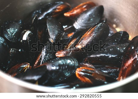 Boiling mussels in white wine sauce - stock photo