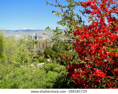 Boise is known as the City of Trees and is pictured with blooming red crape myrtle in the foreground.                            - stock photo