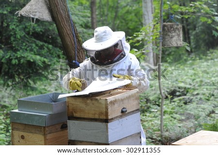 BOISSISE LE ROI - FRANCE, MAY 2014 : beekeeper who is checking the state of his hives