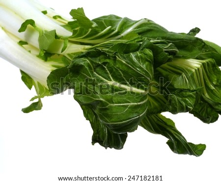 Bok choy (brassica chinensis) over white is a Chinese cabbage  - stock photo