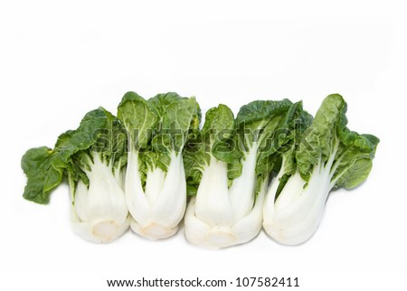 Bok choy (chinese cabbage) isolated on white - stock photo