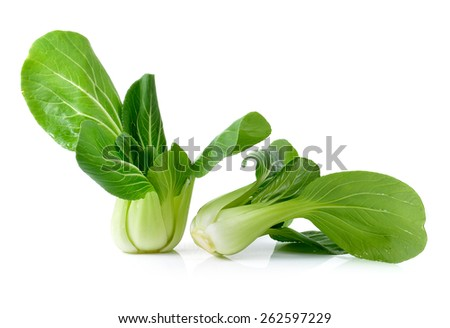 Bok choy isolated on a white background - stock photo