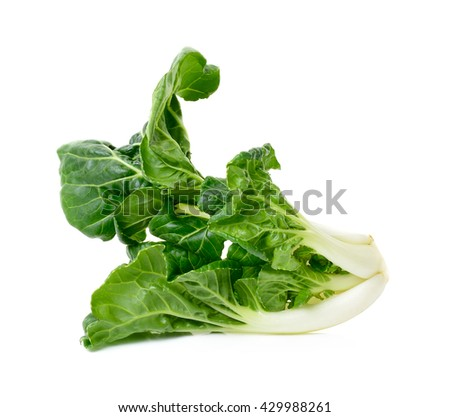 Bok choy vegetable isolated on the white background.