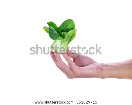 bokchoy in a Human hand isolated on white.
