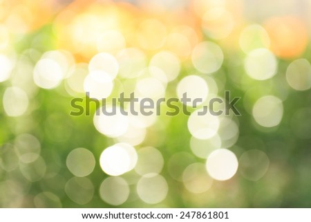 Bokeh and blurred light background