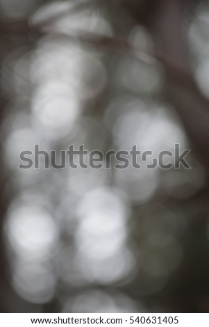 Bokeh Background / Texture