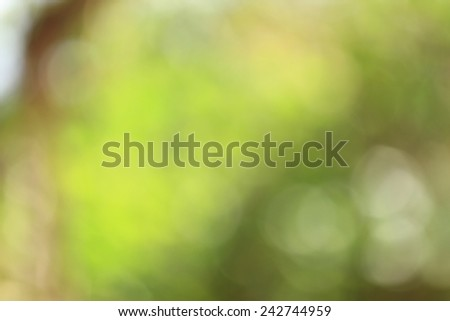 Bokeh,blurred bokeh. - stock photo