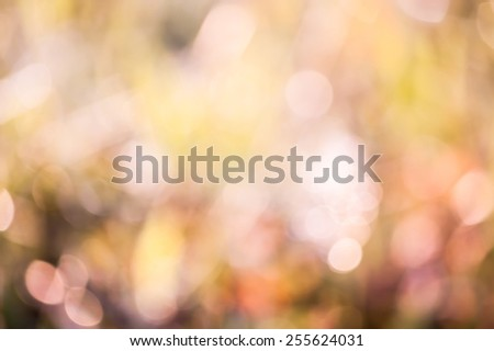 bokeh blurry natural abstract green pink background - stock photo