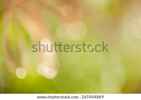 bokeh blurry natural pink grass floral abstract green background - stock photo