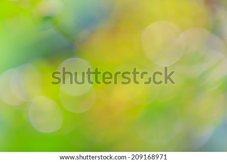 Bokeh glowing light on a green background  - stock photo