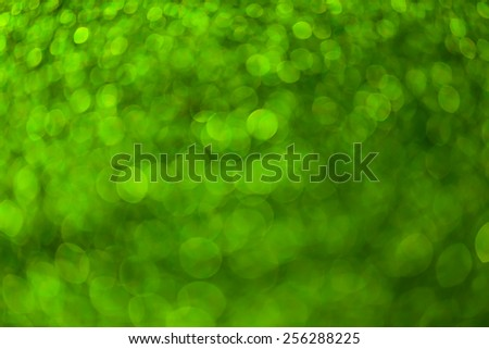 Bokeh green nature background. - stock photo
