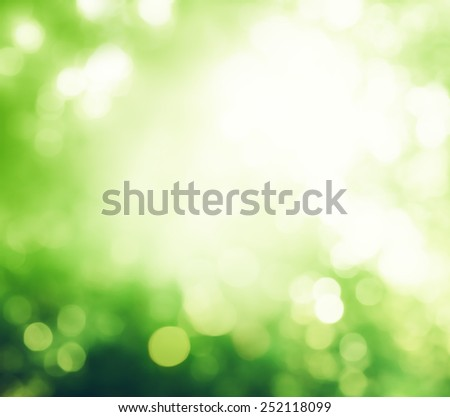 bokeh in morning forest - stock photo