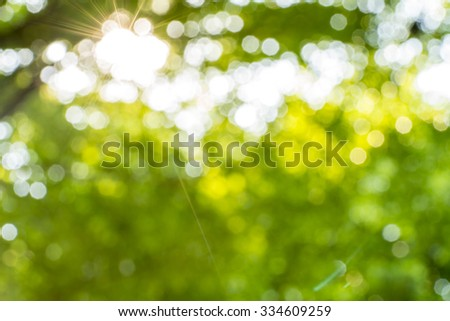 Bokeh leaf with sunlight,  use for background - stock photo