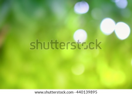 Bokeh natural color background  Warm Filter leaf of the tree fresh green  abstract blurred foliage and bright summer sunlight with copy space - stock photo