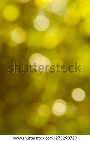 Bokeh Nature background.  abstract green background from tree. Defocused lights from tree and leaves. Vertical image