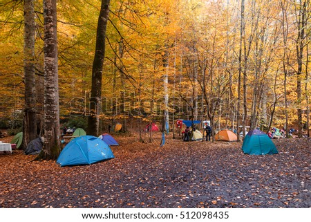 BOLU, TURKEY - NOVEMBER 06, 2016: People camping in forest with fallen leaves, autumn season in Yedigoller. Yedigoller, also known seven lakes, is national park in Bolu, Turkey.