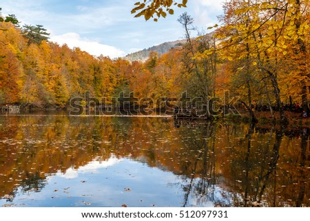 BOLU, TURKEY - NOVEMBER 06, 2016: View of people in forest with fallen leaves and lake with reflection in Yedigoller. Yedigoller, also known seven lakes, is national park in Bolu, Turkey.