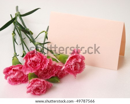 bonch of pink carnation with little pink card as a gift - stock photo