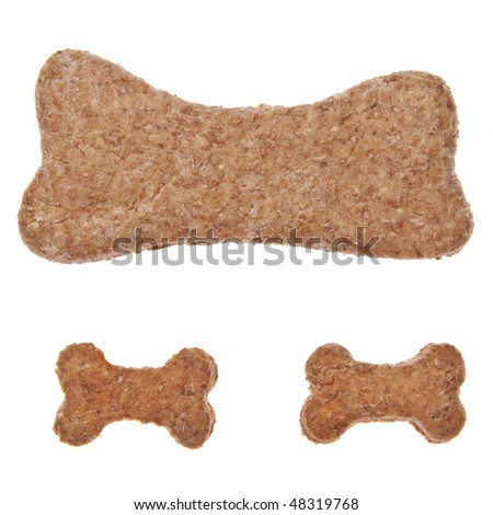 Bone shaped cookies or pet treats for your cat or dog.  Isolated on white with a clipping path. - stock photo