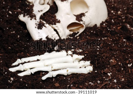 bones in dirt focus hand - stock photo