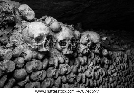 Bones in the Paris Catacomb