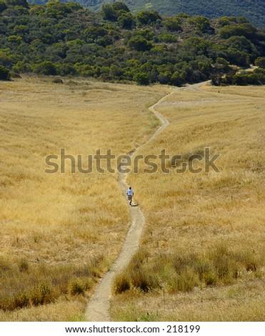 Boney Mountain Trail Run in summer. - stock photo